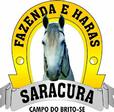 Haras Saracura