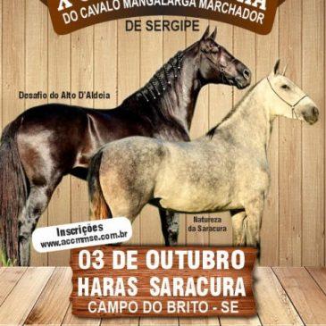 X COPA DE MARCHA DO HARAS SARACURA – CAMPO DO BRITO – SERGIPE